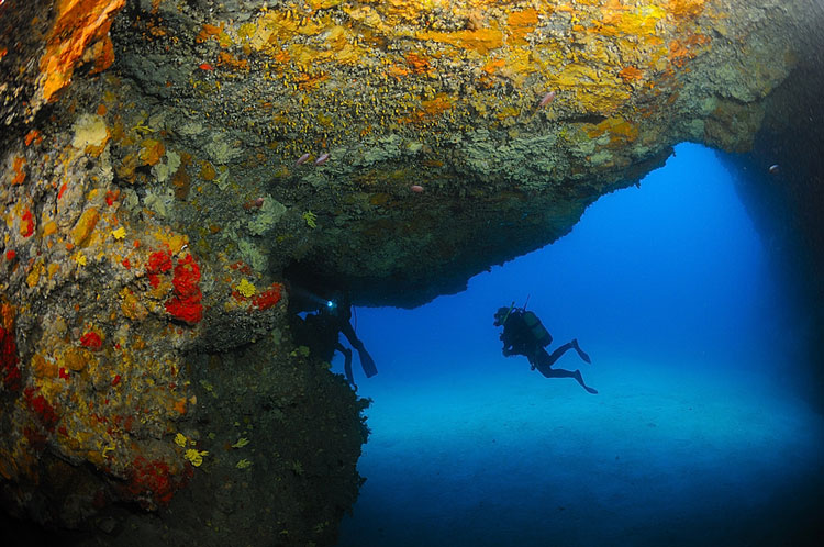 Blue hole safari diving