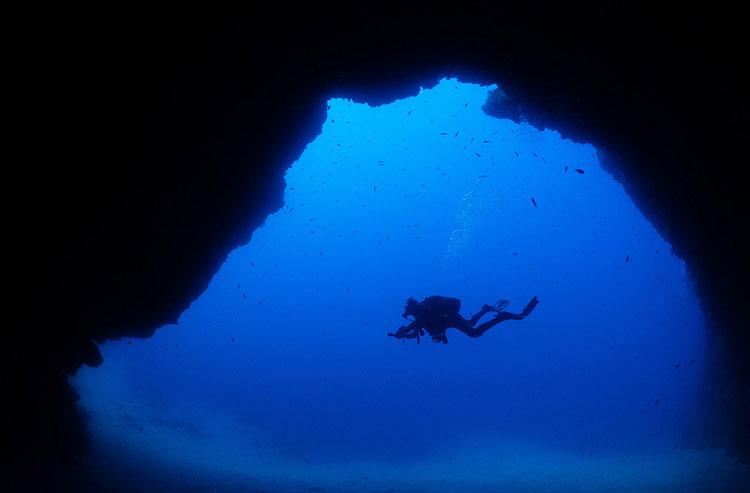 cathedral safari diving