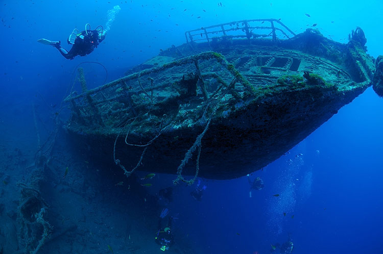 wreckdive safari diving